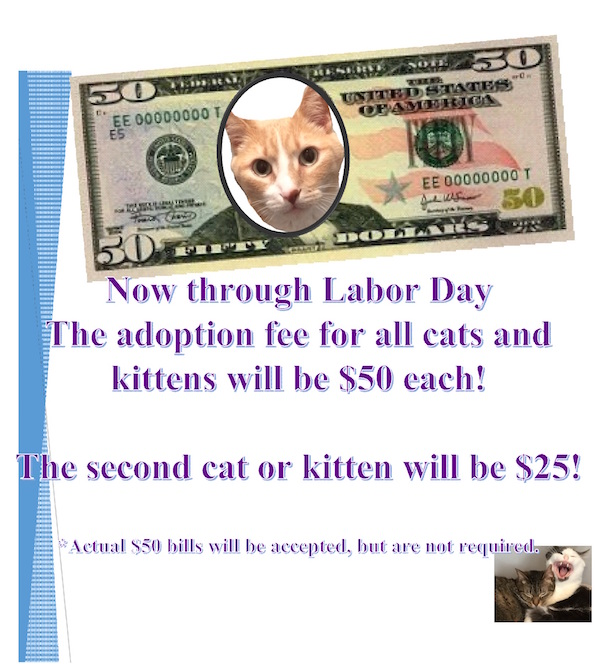 FiftyDollarAdoptions